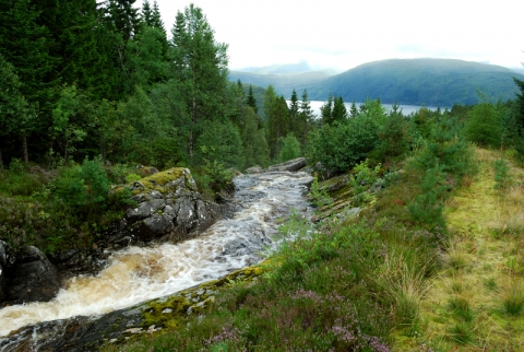 norge_056